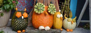 egg-harbor-pumpkin-patch-festival
